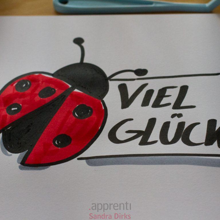 Visuelle Inspiration der Woche - Käfer 2