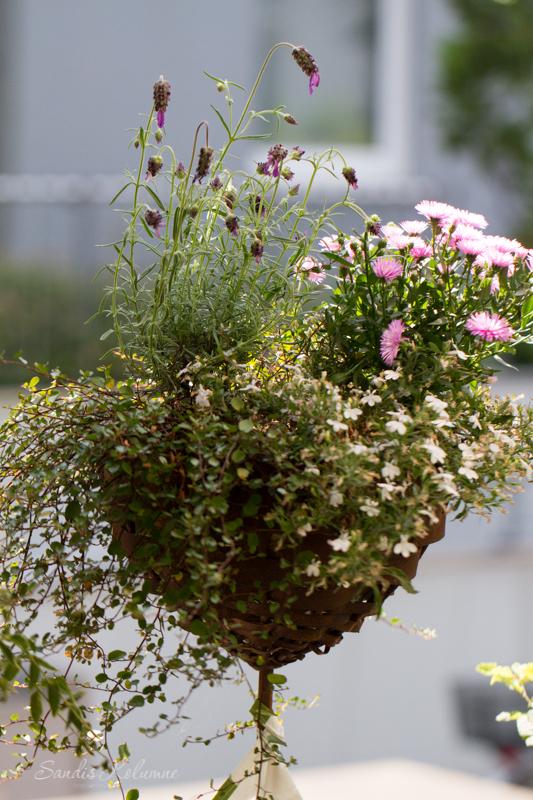 Sandra Dirks - Flipchart - Die Blumenschale