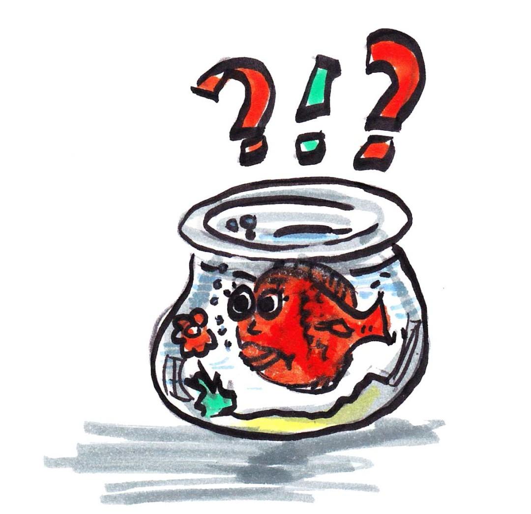 Sandra Dirks - Die Methode Fishbowl