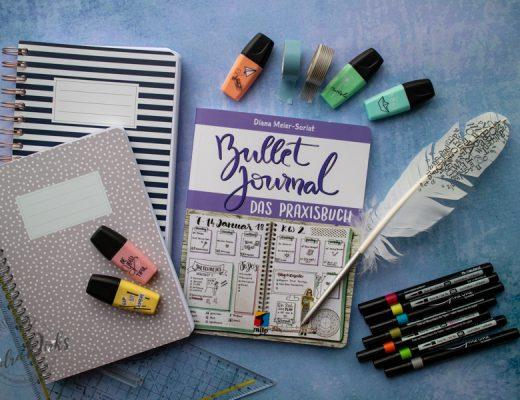 Sandra Dirks - Rezension Bullet Journal Praxisbuch