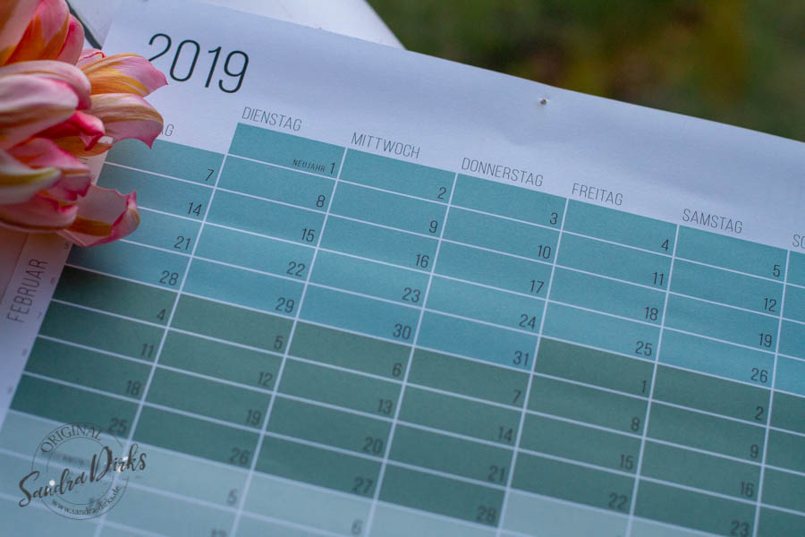 Sandra Dirks - Stellt ihre Top7 Learnings und Produkte aus dem Januar 2019 vor