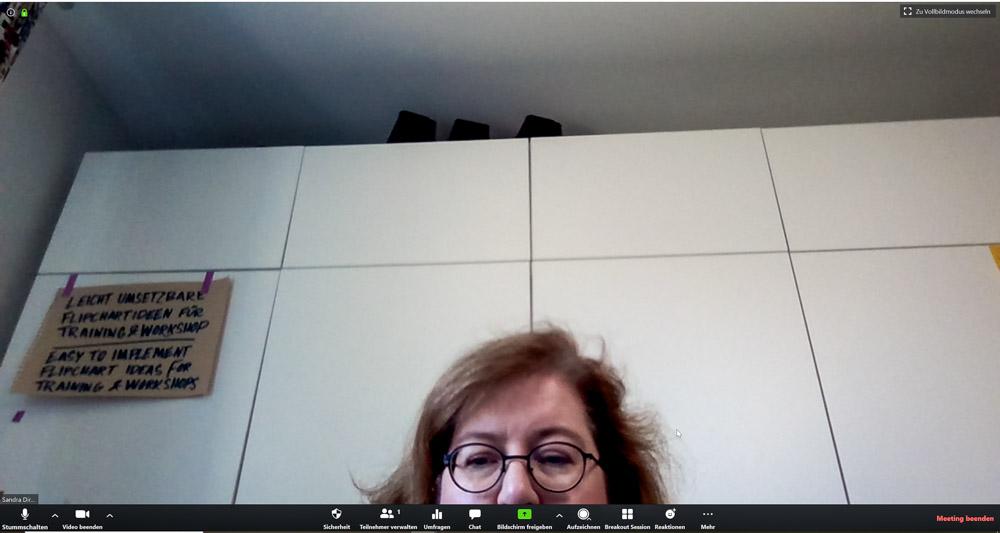 Sandra Dirks - HowTo-Webcam im Zoomfenster unsichtbar